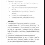 Statement of Claim Page 3
